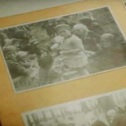 Vídeos acerca de la enseñanza del Holocausto